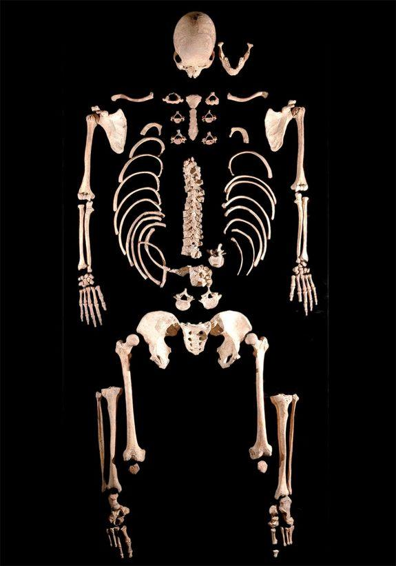 Cavemen Bones Yield Oldest Modern Human DNA