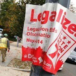 DC Mayor Vows To Move Forward With Marijuana Legalization Despite Republican Threats Of Jail