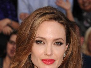 Angelina Jolie, Bio Shot, Profile…