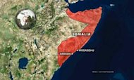 Al Shabaab: 'Western Forces Strike In Somalia'
