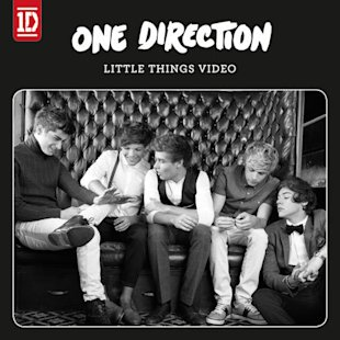 One Direction Little Things video