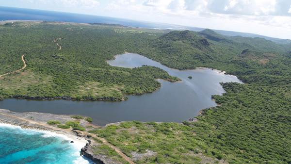 Ancient Caribbean Tsunami Likely Altered Ecosystems