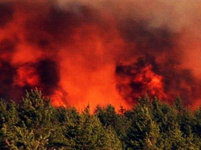 Wisconsin Wildfire Consumes 8,700 Acres