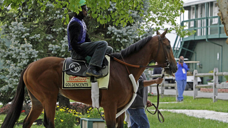 Preakness Stakes hopeful Goldencents, with jockey Kevin Krigger in the saddle, walks to the track for a morning workout at Pimlico Race Course Wednesday, May 15, 2013, in Baltimore. The Preakness Stakes horse race is Saturday. (AP Photo/Garry Jones)