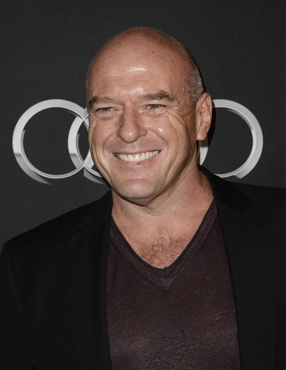 Actor Dean Norris arrives at the BAFTA's Los Angeles TV Tea party at the SLS Hotel on Saturday, Sept. 21, 2013 in Los Angeles. (Photo by Dan Steinberg/Invision/AP)
