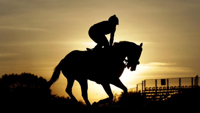 Oxbow, with an exercise rider aboard, gallops at Pimlico Race Course in Baltimore, Friday, May 17, 2013. The Preakness Stakes horse race is scheduled to take place May 18. (AP Photo/Patrick Semansky)