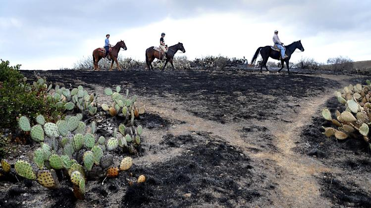 Horseback riders pass the burned area of the Santa Monica Mountains National Recreation Area in Newbury Park, Calif.  on May 6, 2013, where some cactus survived the spring fire. Investigators ruled out arson as the cause of the fire that charred 44 square miles at the western end of the Santa Monica Mountains. (AP Photo/Tina Burch)