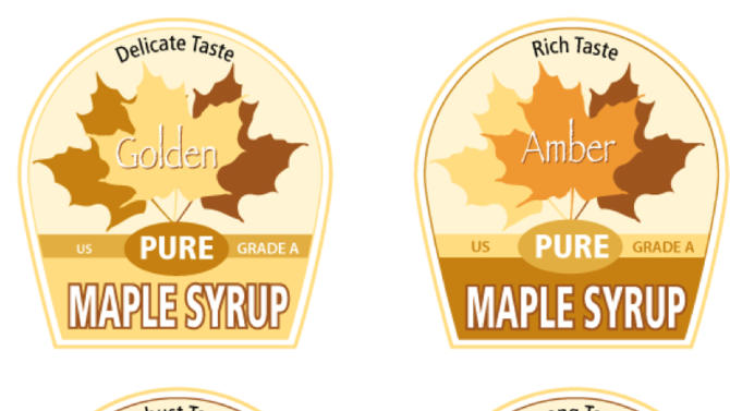 """In this graphic by Cedarlane Studio of Spencerville, Ontario, proposed new labels for maple syrup are shown.  Vermonters have grown accustomed to their """"fancy"""" """"amber"""" and """"grade B"""" types of maple syrup but new consumers may not be so sweet on the terms. So the country's largest producer of the pancake topping is thinking of doing away with those terms and adopting new international names with flavor descriptions to help consumers delineate between four different colored and flavored syrups and to match new worldwide terms. The four classifications would be golden color, delicate taste; amber color, rich taste; dark color, robust taste; and very dark color, strong taste. (AP Photo/Cedarlane Studio of Spencerville, Ontario)"""