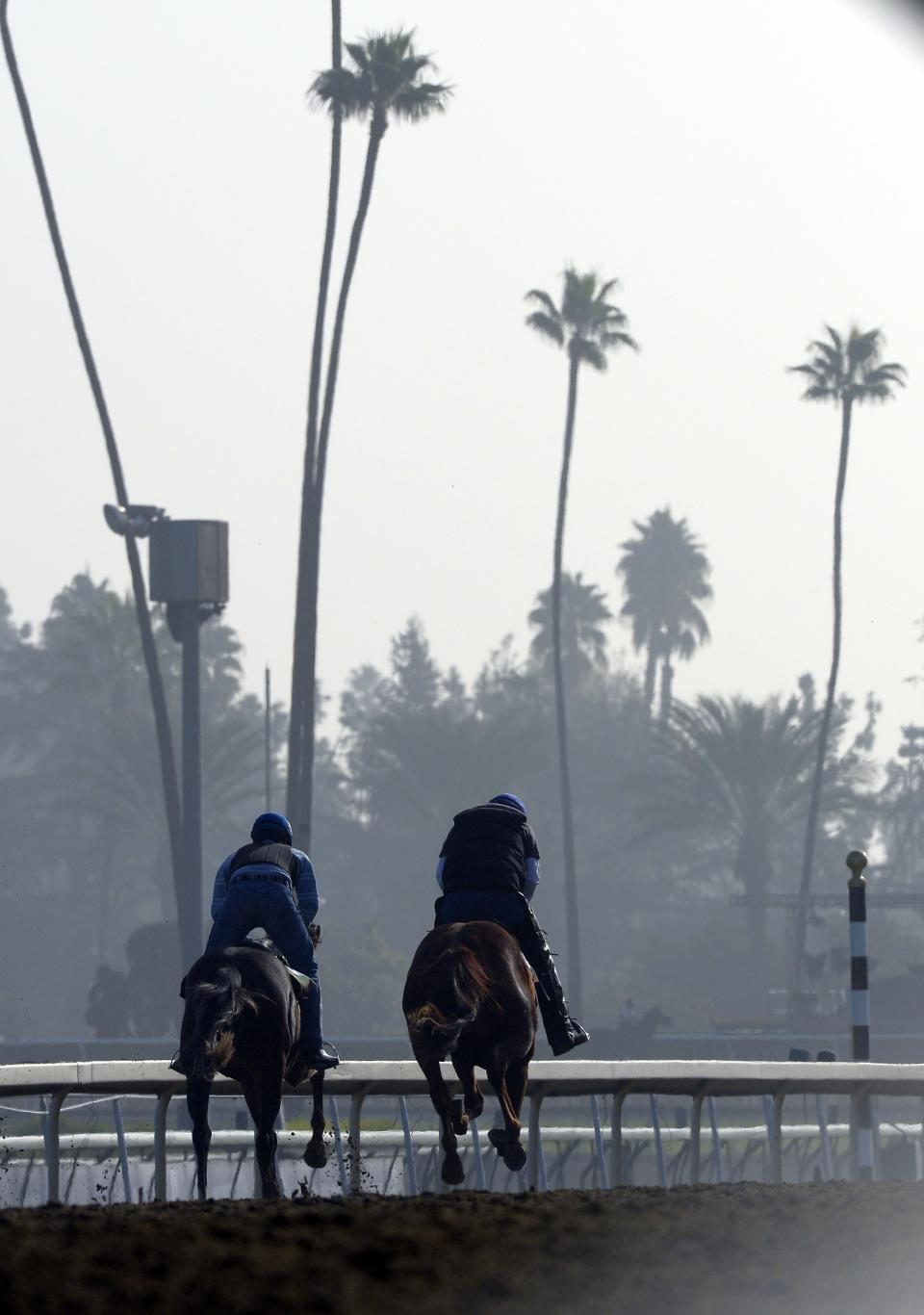 Horses workout at Santa Anita Park, Thursday, Nov. 1, 2012, in Arcadia, Calif. The race track is hosting the Breeders' Cup horse race on Friday and Saturday.  (AP Photo/Mark J. Terrill)