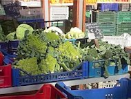 Tumori: composto nei broccoli promettente contro leucemia pediatrica