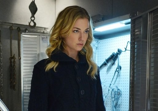 Eye on Emmy: Revenge's Emily VanCamp on Her Badass Transition and the Identity of Em's Mom
