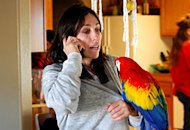Heidi Fleiss | Photo Credits: Animal Planet