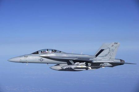 "A U.S. Navy EA-18G Growler carrier-based electronic warfare jet from the Electronic Attack Squadron ""Scorpions"" flies over the Mediterranean..."