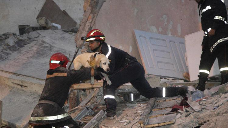 Firefighters carry a sniffing dog up a ladder to help them search for victims trapped under the rubble after buildings collapsed in downtown Casablanca