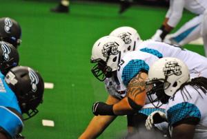 ArenaBowl XXV Impressions:  Fan Opinion