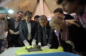 The discovery of 12,460-year-old puppies in Russia…