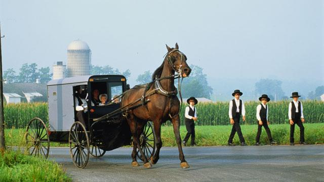 Ohio Amish Attacked by Beard- and Hair-Cutters