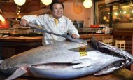 Bluefin Tuna Auctioned For Record &#92;$1.7m