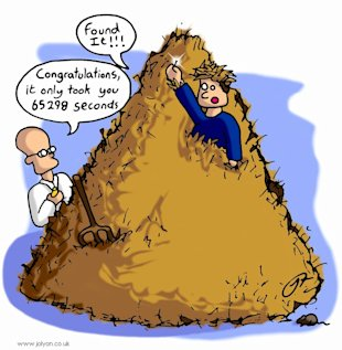Are Sales Leads Like Needles In Haystacks? image needle in the haystack