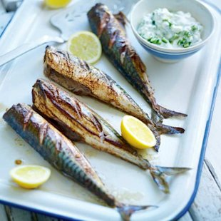 Grilled spiced mackerel with creamy cucumber
