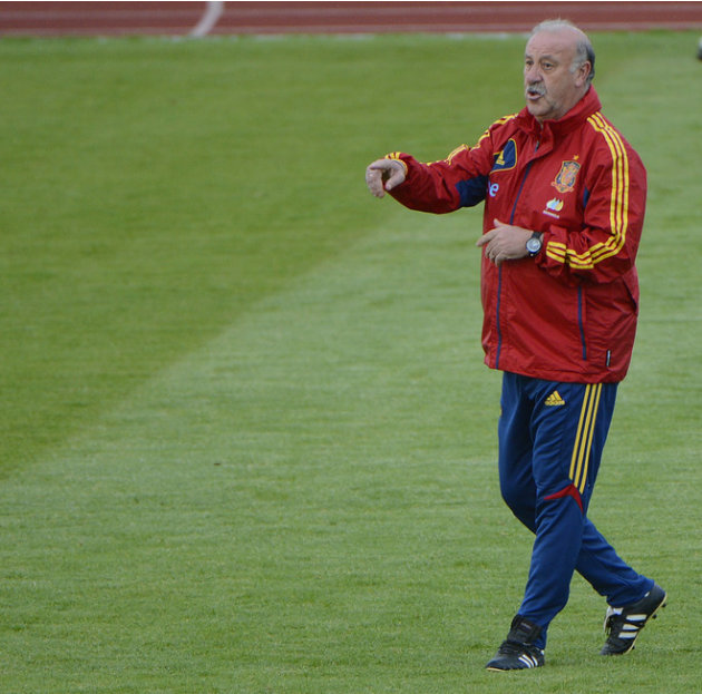 Spanish Headcoach Vicente Del Bosque Gestures AFP/Getty Images