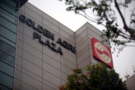 Golden Agri Plaza is seen in Singapore