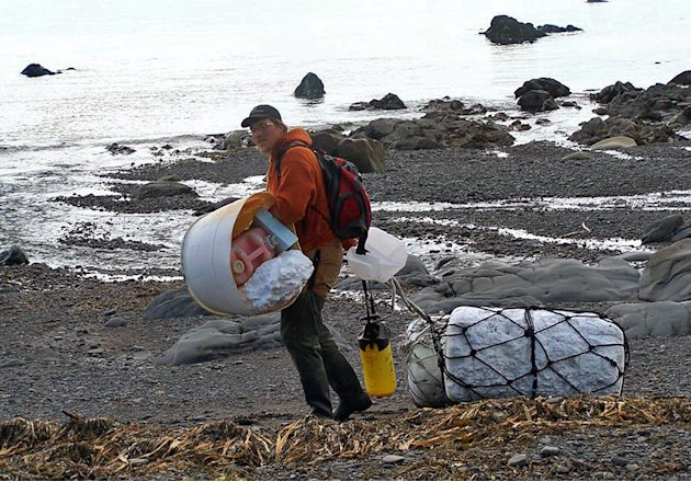 In this June 6, 2012 photo provided by Ryan Pallister, Patrick Chandler removes tsunami debris on Montague Island near Seward, Alaska. More than a year after a tsunami devastated Japan, killing thousa