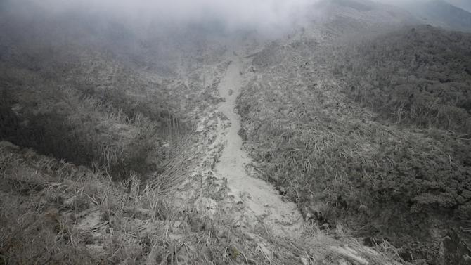Trees leveled to the ground by pyroclastic flow and covered volcanic ash on Mount Shindake are seen at Kuchinoerabujima island