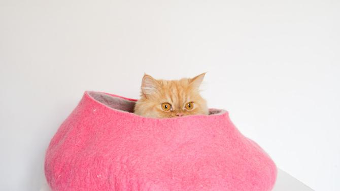 12 incredible pet beds on Etsy pink cave