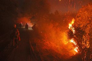 U.S. Forest Service handout photo shows Monterey firefighters…