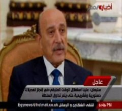 Egyptian VP calls out satellite networks