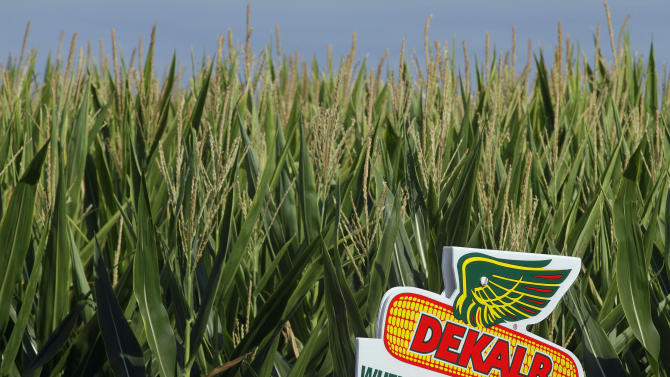 Monsanto profit balloons on Latin American sales