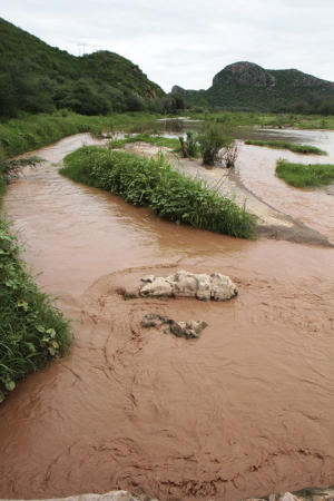 In this Aug. 14, 2014 photo, the contaminated Sonora…