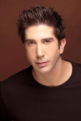 David Schwimmer as Ross Geller in NBC's Friends