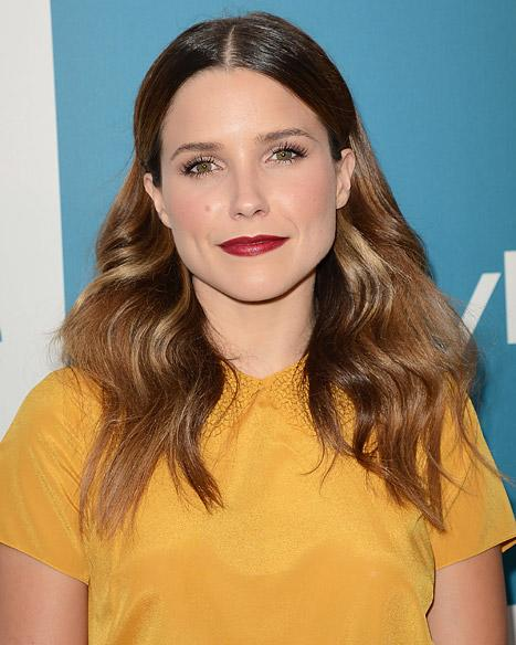 Sophia Bush Challenges Todd Akin, Paul Ryan's Stance on Rape