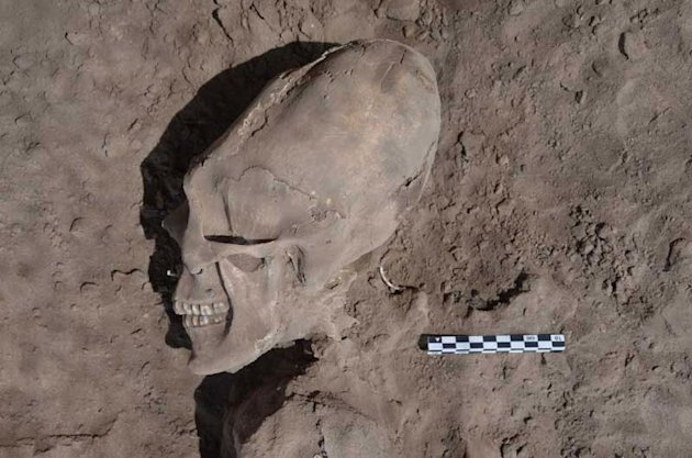 The skulls were unearthed at the village of Onavas in Mexico (Image: INAH)