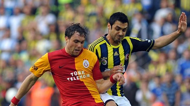 Sweden striker Elmander doubtful for Euros