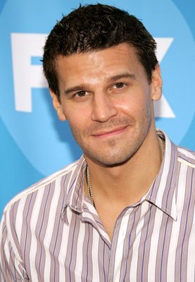 David Boreanaz 2006 FOX TCA Summer Party Photos Pasadena, CA - 7/25/2006