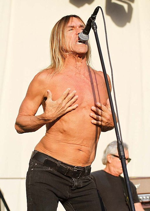 Iggy Pop Big Day Out Cncrt