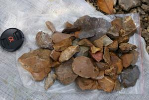 Surface-collected stone artefacts that were found lying scattered on the gravelly surface near Talepu on the Indonesian island of Sulawesi, are pictured in this handout photo