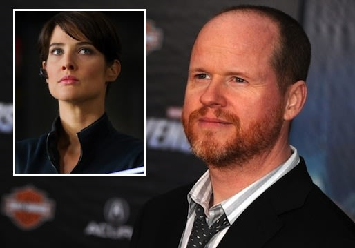 Joss Whedon Talks of 'Hopeful' S.H.I.E.L.D. Pilot, Plans for Maria Hill and Other Marvel Characters