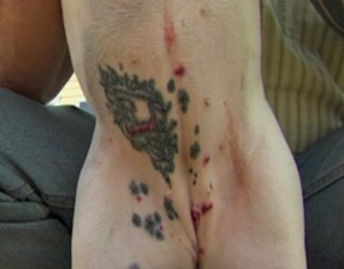 The tattoo on the dog A North Carolina man has sparked controversy ...