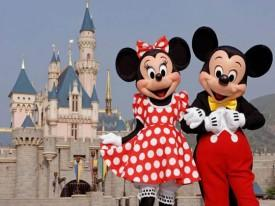 Disney Theme Parks Find Cure For Insomnia