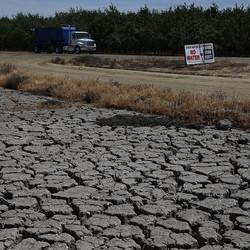 Poll Finds Support For Water Conservation Efforts Amid California's Historic Drought
