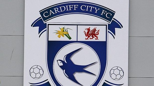 General view of the Cardiff City badge