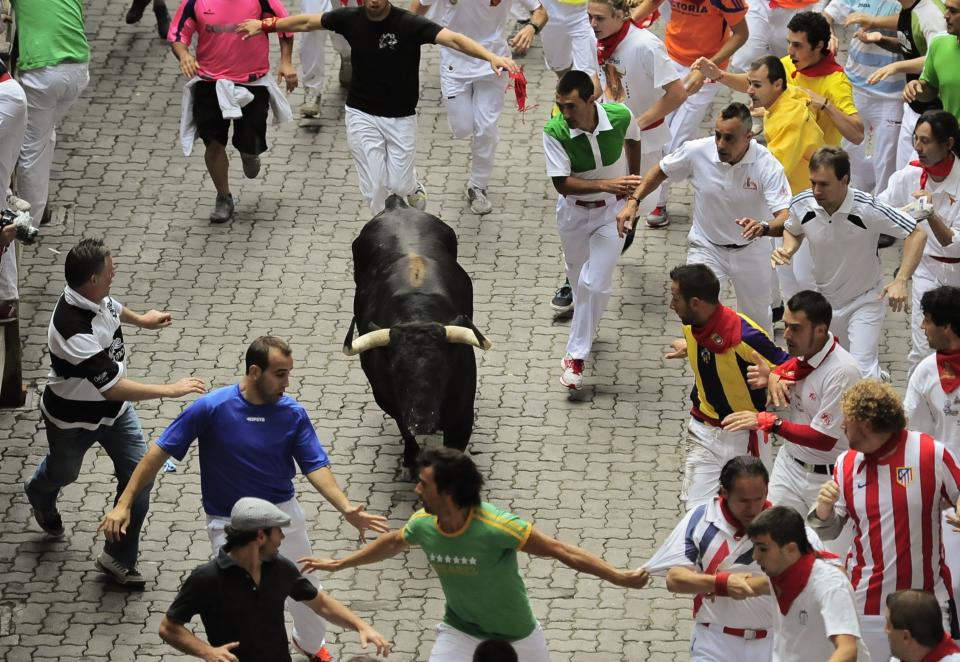 Revelers run on the Callejon way  with a Cebada Gago ranch fighting bull, during the third running of the bulls at the San Fermin fiestas, in Pamplona northern Spain, Monday, July 9, 2012. (AP Photo/Alvaro Barrientos)