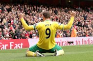 Chris Hughton hopes to have Grant Holt (pictured) at his disposal after becoming Norwich's new manager
