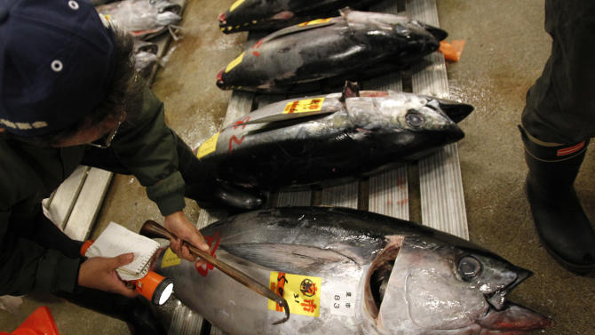 Tuna collapse fears fail to curb Japan's appetite