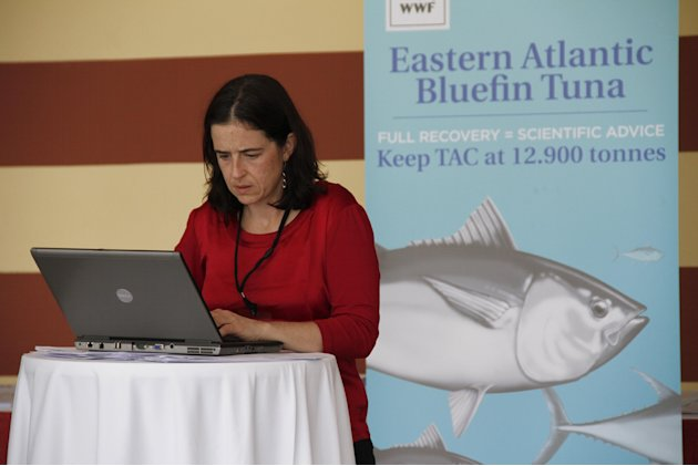 Shark expert Allison Perry of Oceana Europe works on her computer outside the conference for the 18th meeting of the International Commission for the Conservation of Atlantic Tuna in Agadir, Morocco,