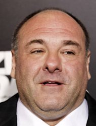 James Gandolfini apologises to Leon Panetta for Zero Dark Thirty portrayal